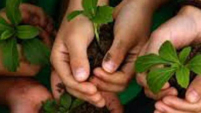 Capacitación ambiental para docentes